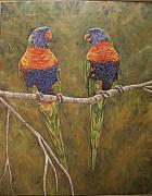 Jason  Swain - Rainbow Lorikeets
