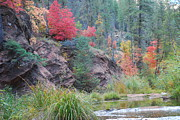 Oak Creek Photo Posters - Rainbow of the Season with River Poster by Heather Kirk