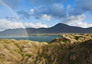Religious Pyrography Posters - Rainbow over Croagh Patrick Ireland Poster by Peter McCabe