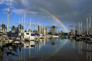 Dark Skies Posters - Rainbow Over Harbor Poster by Peter French - Printscapes