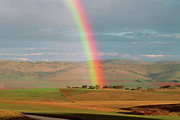 Gravel Road Prints - Rainbow Over Jamestown Farmland In South Australia Print by Peter Walton Photography