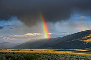 Yellowstone Park Scene Prints - Rainbow Over Lamar Valley Print by Yvonne Baur