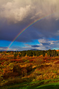 Rainbow Over Rithets Bog Print by Louise Heusinkveld