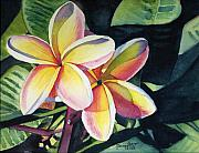 Flower Tapestries Textiles Posters - Rainbow Plumeria Poster by Marionette Taboniar