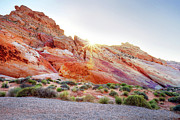 Valley Of Fire Posters - Rainbow Rocks At Valley Of Fire, Nevada, Usa Poster by Copyright Sarah Wright