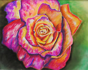 Orange Colored Pastels Prints - Rainbow Rose Print by Alissa  Perez