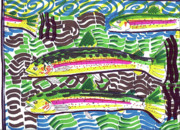 Trout Stream Drawings - Rainbow Trout School by Robert Wolverton Jr