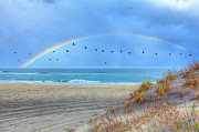 Pea Island Prints - Rainbows and Wings I Print by Dan Carmichael