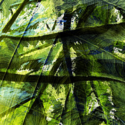 Mixed Media Photo Posters - Rainforest Abstract Poster by Bonnie Bruno