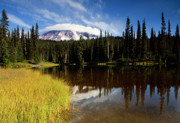 Cap Photos - Rainier Capped by Mike  Dawson