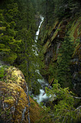 Waterfall Prints - Rainier Gorge Vista Print by Mike Reid