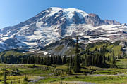 Mount Mazama Posters - Rainier Mazama Ridge Poster by Mike Reid