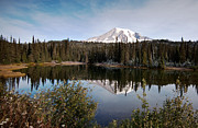Serene Prints - Rainier Serenity Print by Mike Reid