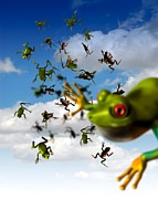 Frog Artwork Prints - Raining Frogs, Artwork Print by Victor Habbick Visions