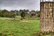 Grey Clouds Photos - Rainy Day on the Farm by Douglas Barnett