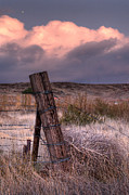 Ranch Posters - Ranch Fence Post Poster by Peter Tellone