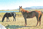 Expressionist Equine Prints - Ranch Horses Print by Lenore Senior and Dawn Senior-Trask