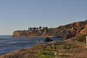 Rancho Palos Verdes Framed Prints - Rancho Palos Verdes Cliffs. Framed Print by Ashley Knowles