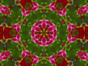 Kaleidoscope Originals - Random Bouquet by John Poltrack