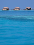 Bungalows Framed Prints - Rangali Island Maldives 20 Framed Print by Per Lidvall