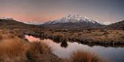 New River Valley Prints - Rangitata River Valley With Mt Darchiac Print by Colin Monteath