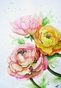 Ranunculus Paintings - Ranunculus flowers by Zaira Dzhaubaeva