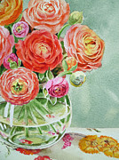 Watercolor By Irina Posters - Ranunculus in the Glass Vase Poster by Irina Sztukowski