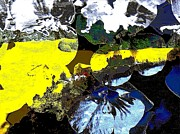 Rape Field Print by Navo Art