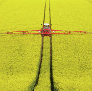 Machinery Photo Posters - Rape Seed Spraying Poster by JT images