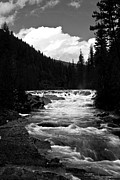 Montana Digital Art - Rapid Flows in Gray by Joseph Noonan