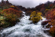 Autumn Scene Photos - Rapid Waters by Carlos Caetano