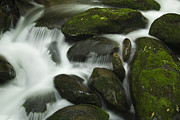 Tennessee Metal Prints - Rapids Close-up Metal Print by Andrew Soundarajan