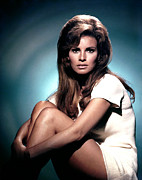 Teased Hair Prints - Raquel Welch Print by Everett