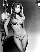 Bare Midriff Posters - Raquel Welch, Portrait From The Film Poster by Everett