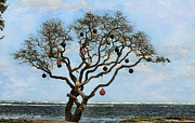 Buoys Prints - Rare Buoy Tree Print by Cheryl Young