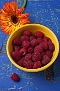 Blue Table Framed Prints - Raspberries in yellow bowl Framed Print by Garry Gay
