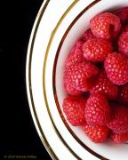 Raspberry Photo Originals - Raspberry Plates by Karen Fahey