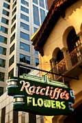 Charlotte Photo Prints - Ratcliffes Flowers Print by Patrick Schneider