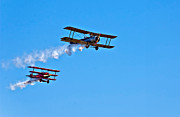 Biplane Photos - Rats...The Red Baron by Steve Harrington