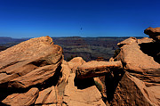 South Kaibab Trail Prints - Raven Flying Near Ooh Aah Point Print by Julie Niemela