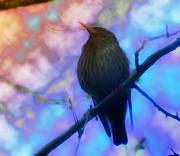 Black Bird Prints - Raven in Spring Print by Bill Cannon