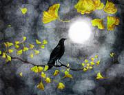 Laura Iverson - Raven in the Rain