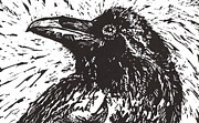 Lino Mixed Media Posters - Raven Poster by Julia Forsyth