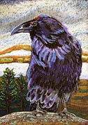 Black Pastels Framed Prints - Raven Spirit Framed Print by Harriet Peck Taylor