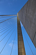 Donny Metal Prints - Ravenel Overhead Day - Vertical Metal Print by Donni Mac