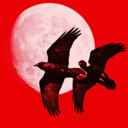 Perigee Moon Prints - Ravens of the Moon . Red Square Print by Wingsdomain Art and Photography