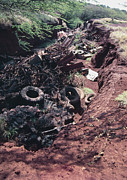 Hawai Posters - Ravine Filled With Rubbish Poster by G. Brad Lewis