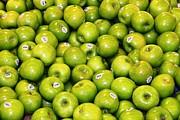 Paul SEQUENCE Ferguson             sequence dot net - Raw Food 49