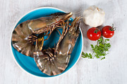 Garlic Framed Prints - Raw Prawns Framed Print by Sabino Parente