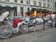 Horse And Buggy Photo Posters - Ready For A Ride Poster by Kathy Jennings